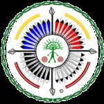 Shamanic Connection Logo